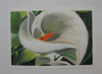 """Enigma"" Lydia Merrick, Maranacook Community High School, Grade 10, Art Teacher: Linda Nichols Phillips"