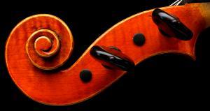 Violin - Scroll